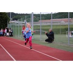 Sportovní dětský den - Čokoládová trepka 2017 I. - obrázek 67