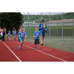 Sportovní dětský den - Čokoládová trepka 2017 I. - obrázek 86
