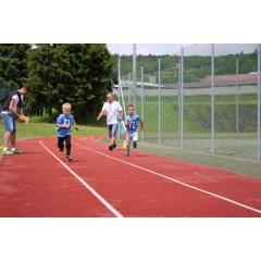Sportovní dětský den - Čokoládová trepka 2017 I. - obrázek 88