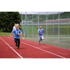 Sportovní dětský den - Čokoládová trepka 2017 I. - obrázek 89