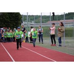 Sportovní dětský den - Čokoládová trepka 2017 I. - obrázek 104