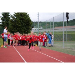 Sportovní dětský den - Čokoládová trepka 2017 I. - obrázek 122