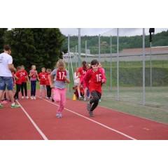 Sportovní dětský den - Čokoládová trepka 2017 I. - obrázek 129