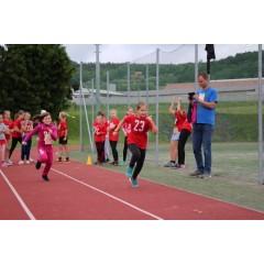 Sportovní dětský den - Čokoládová trepka 2017 I. - obrázek 131