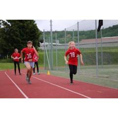 Sportovní dětský den - Čokoládová trepka 2017 I. - obrázek 136