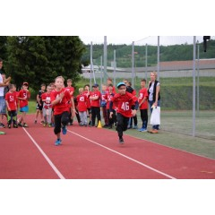 Sportovní dětský den - Čokoládová trepka 2017 I. - obrázek 140