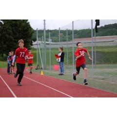 Sportovní dětský den - Čokoládová trepka 2017 I. - obrázek 152