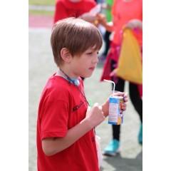 Sportovní dětský den - Čokoládová trepka 2017 I. - obrázek 180
