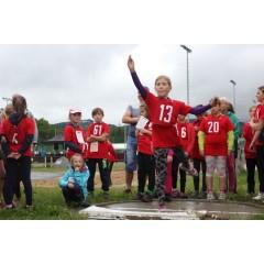 Sportovní dětský den - Čokoládová trepka 2017 IV. - obrázek 24