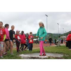 Sportovní dětský den - Čokoládová trepka 2017 IV. - obrázek 55