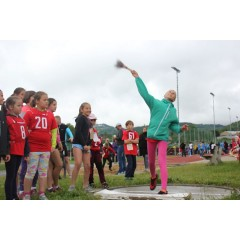 Sportovní dětský den - Čokoládová trepka 2017 IV. - obrázek 57