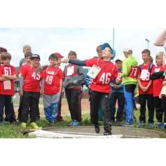 Sportovní dětský den - Čokoládová trepka 2017 IV. - obrázek 81