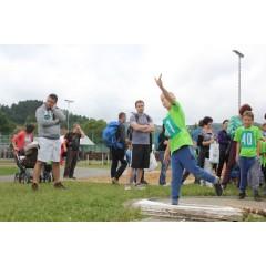 Sportovní dětský den - Čokoládová trepka 2017 IV. - obrázek 266