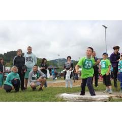 Sportovní dětský den - Čokoládová trepka 2017 IV. - obrázek 285