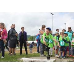 Sportovní dětský den - Čokoládová trepka 2017 IV. - obrázek 293