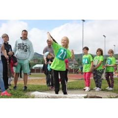 Sportovní dětský den - Čokoládová trepka 2017 IV. - obrázek 330