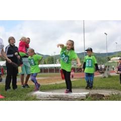 Sportovní dětský den - Čokoládová trepka 2017 IV. - obrázek 343