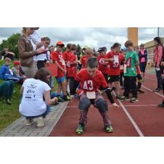 Sportovní dětský den - Čokoládová trepka 2017 VII. - obrázek 138