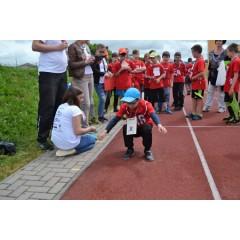 Sportovní dětský den - Čokoládová trepka 2017 VII. - obrázek 144