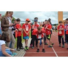 Sportovní dětský den - Čokoládová trepka 2017 VII. - obrázek 155