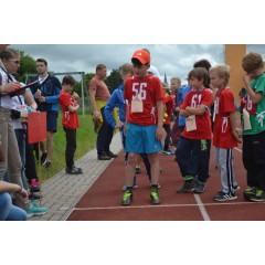 Sportovní dětský den - Čokoládová trepka 2017 VII. - obrázek 161