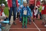 Sportovní dětský den - Čokoládová trepka 2017 VII. - obrázek 213