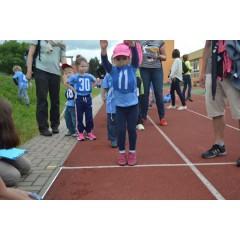 Sportovní dětský den - Čokoládová trepka 2017 VII. - obrázek 241
