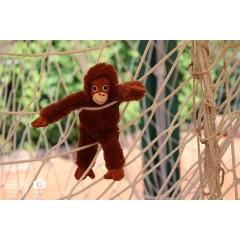 Čokoládová trepka 2018 - úžasný svět zvířat I. - obrázek 3