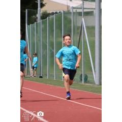 Dětský sportovní den 2019 - II. - obrázek 246