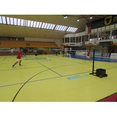 Badmintonový turnaj Hala CUP 2014 I. - obrázek 47