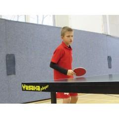 Mikulášský dětský turnaj ve stolním tenise 2014 - obrázek 6
