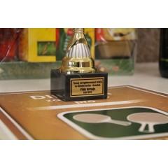 Turnaj neregistrovaných ve stolním tenise - dvouhra mužů - 3. ročník - obrázek 30