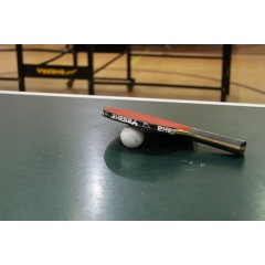 Turnaj neregistrovaných ve stolním tenise - dvouhra mužů - 3. ročník - obrázek 161