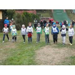 Lyžařské závody v běhu - obrázek 29