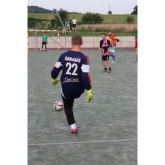 Fotbalový turnaj Bison's midnight 2016 - obrázek 278