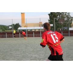Fotbalový turnaj Bison's midnight 2016 - obrázek 289
